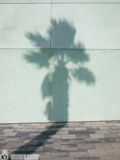 Schatten Palme Barcelona Panasonic GF1
