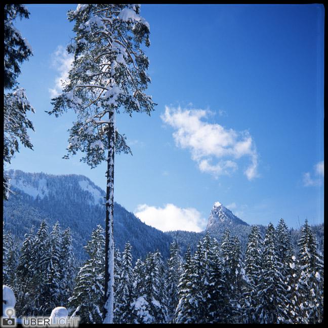 Alpine Winterlandschaft Bayern Agfa Click II